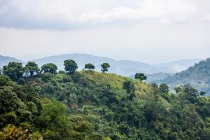 TopUp Jamaica Trip